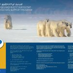 Have you applied for NTI's Nunavut Harvester Support Program?
