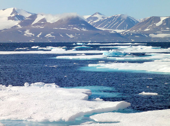 Nunatsiaq News: Inuit to help manage marine conservation area